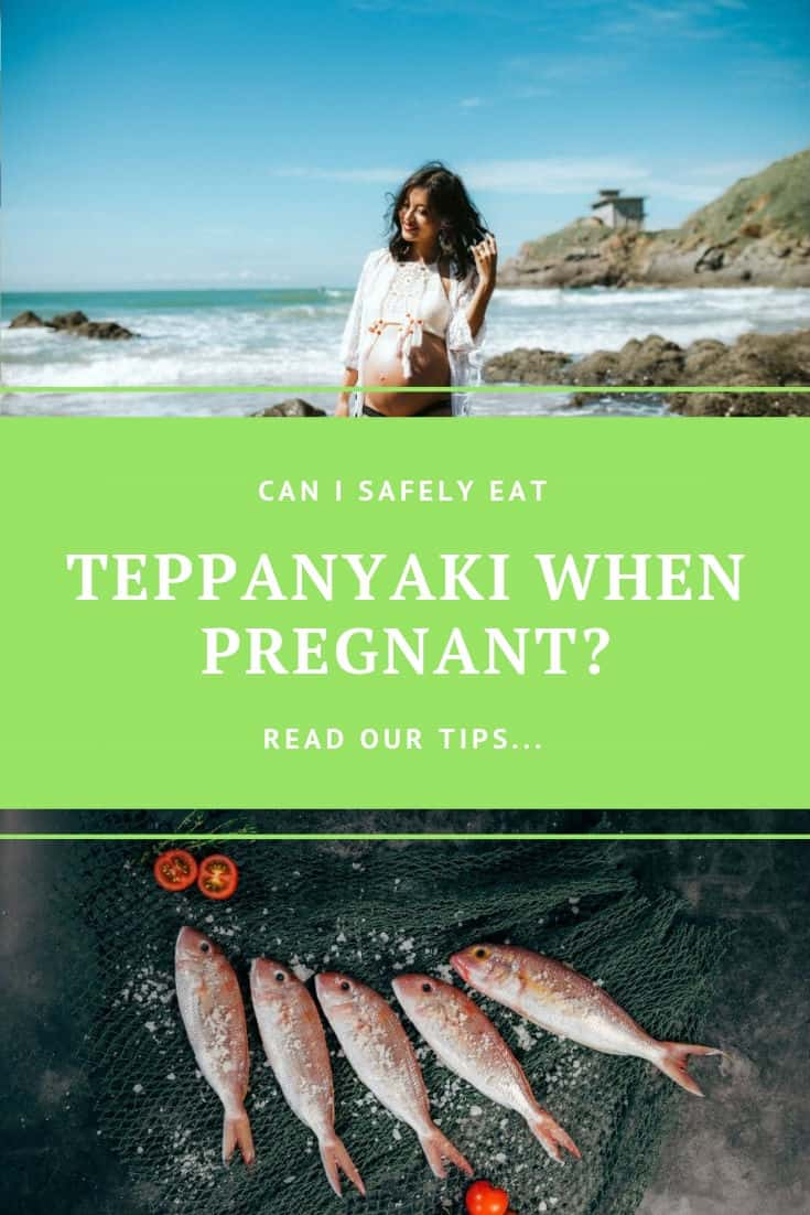 Can i safely eat teppanyaki while pregnant - tips