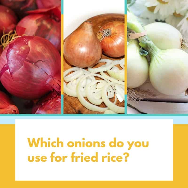 Which onions do you use for fried rice
