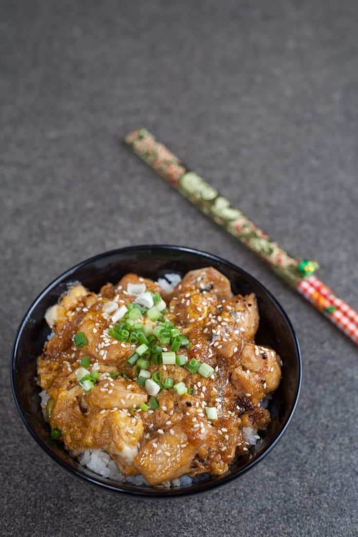Oyakodon Japanese food