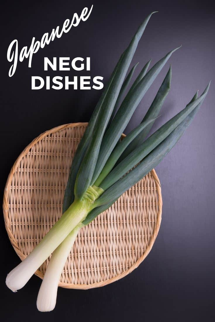 Japanese Negi scallion dishes
