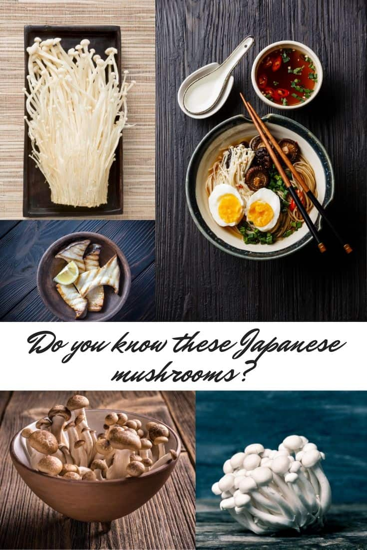 Different types of Japanese mushrooms