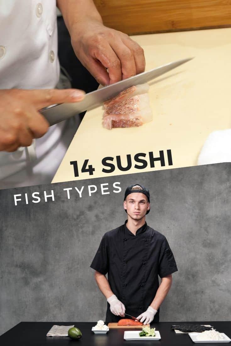 14 sushi fish types