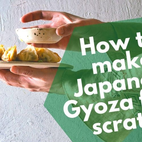 How to make Japanese Gyoza from scratch