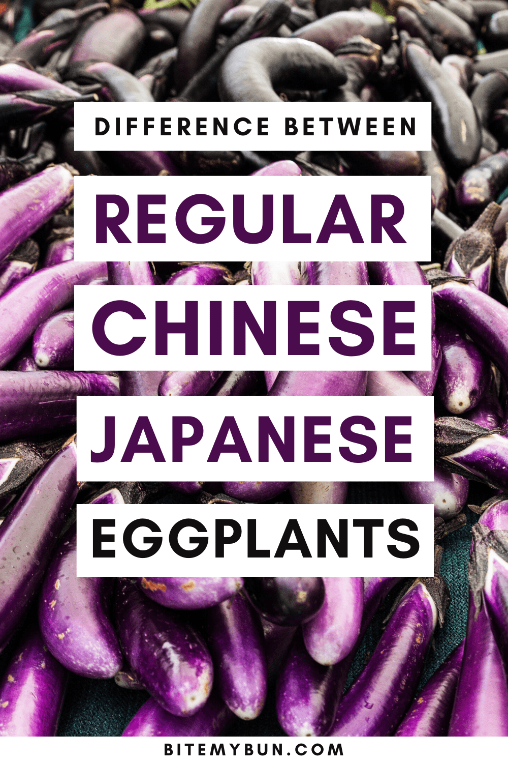 Difference Betwen regular chinese japanese eggplants