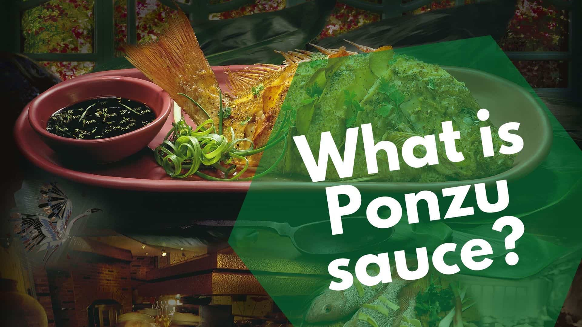 What is Ponzu sauce