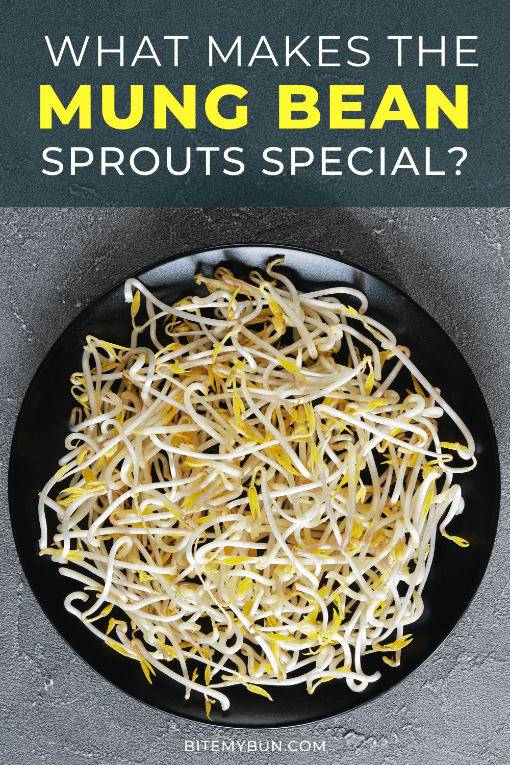 What Makes the Mung Bean Sprouts Special?