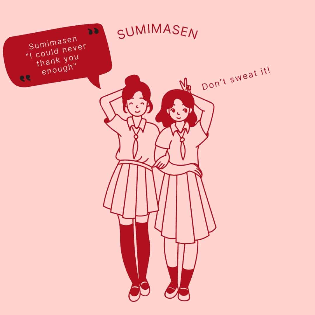 How to use sumimasen